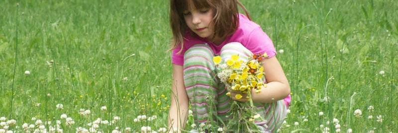 A general image of a girl in a pink shirt picking flowers from a field.